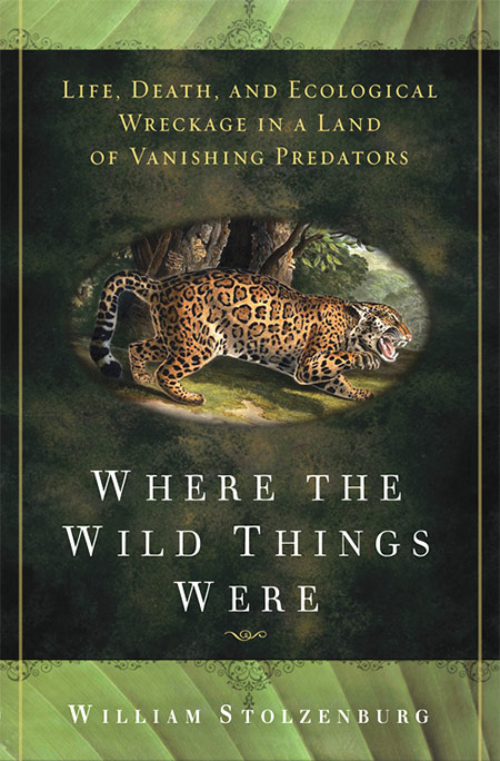 where-the-wild-things-were
