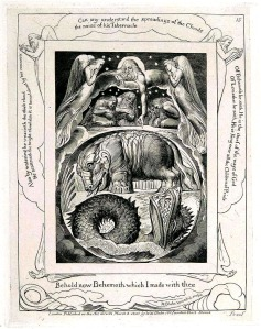 19 BLAKE BEHEMOTH AND LEVIATHAN