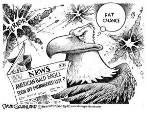 eaglecartoon